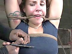 Boxtied sub tormented by black dominator