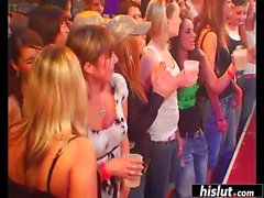 Horny babes giving head at a party
